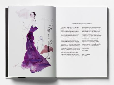 David Downton - DD21 Book